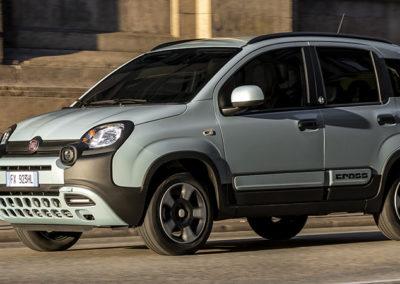 Fiat Panda Launch edition